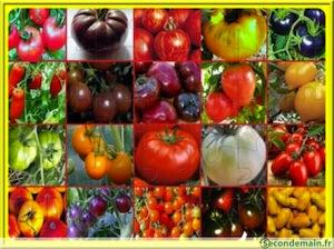 variétés interdites de vivre